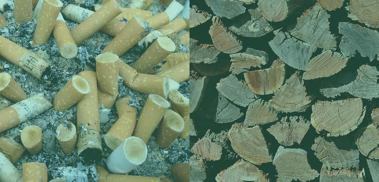 Rauch verursacht Erkrankungen und Abholzung